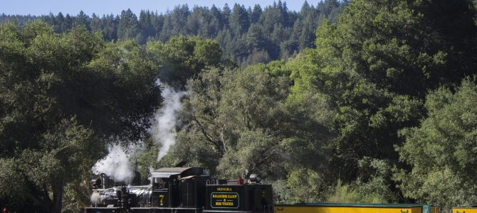 Through the Redwoods on the Roaring Camp Railroads