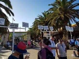 Shore excursion signs