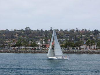 harbor cruise