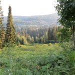 northern Idaho