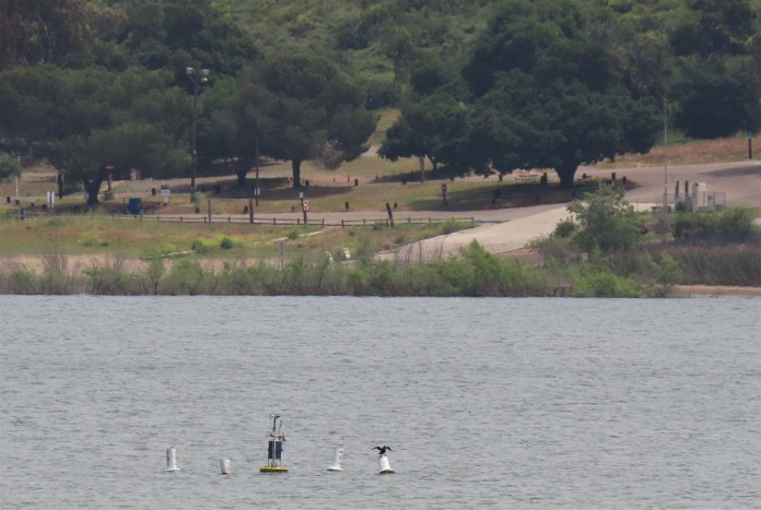 Lake Hodges boat ramp