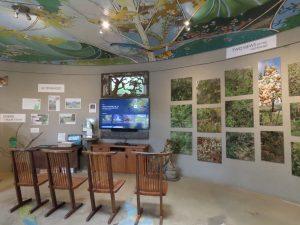 Elfin Forest visitor center