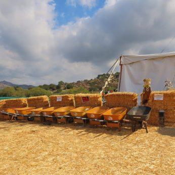 wheelbarrels