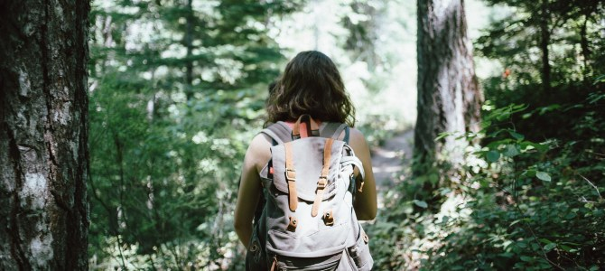 4 Camping Basics for Newbies