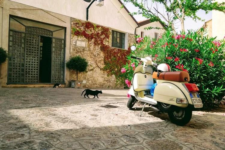 Amalfi Coast cats with Vespa