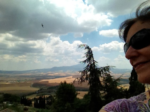 Not, it isn't a painting, it's the view of the Val D'Orcia