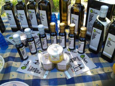 Puglia 2014 - olive oil