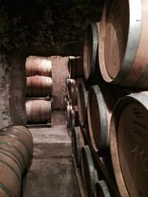 Rows & rows of barrels...