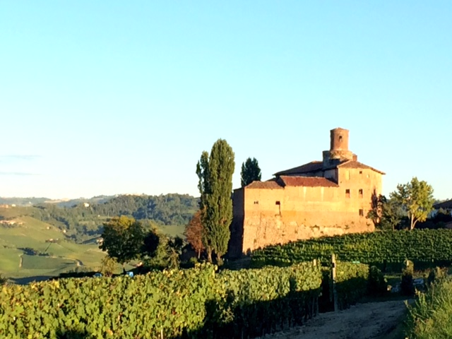 Italian Wine Trails - Piedmont
