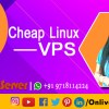 Utilization Of Cheap Linux VPS from Onlive Server | free Classified | Free Advertising | free classified ads