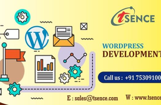 Low Cost Web Design Company in Noida, Delhi NCR : Tsence   free Classified   Free Advertising   free classified ads