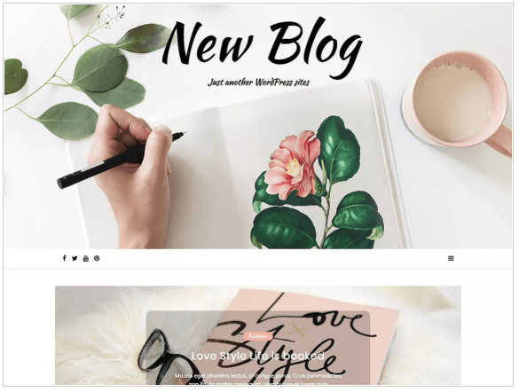 New Blog  3 Top most popular WordPress theme of 2019