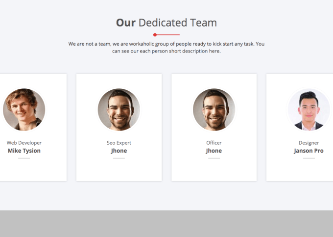 6. OUR TEAM WIDGET SECTION