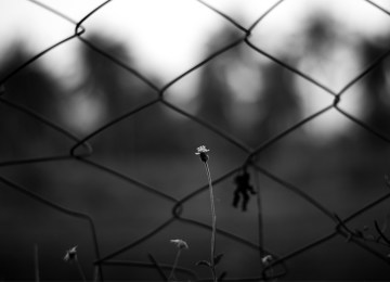 Βιοαφήγηση 16χρονου φυλακισμένου (ναρκωτικά, ληστείες, απόπειρα βιασμού, παράνομη οπλοκατοχή…)