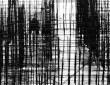 Οι συμβολικές διαστάσεις & προεκτάσεις της γλώσσας του εγκλήματος και η στενή σχέση μεταξύ εγκληματολογίας – γλωσσολογίας