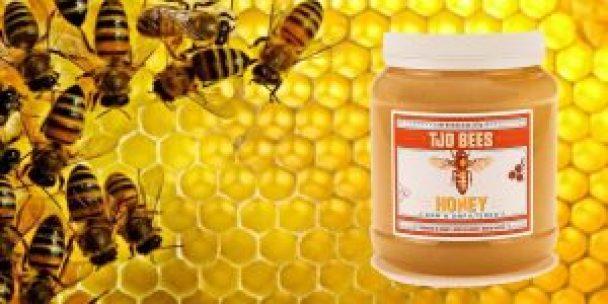 اشهر عسل في العالم