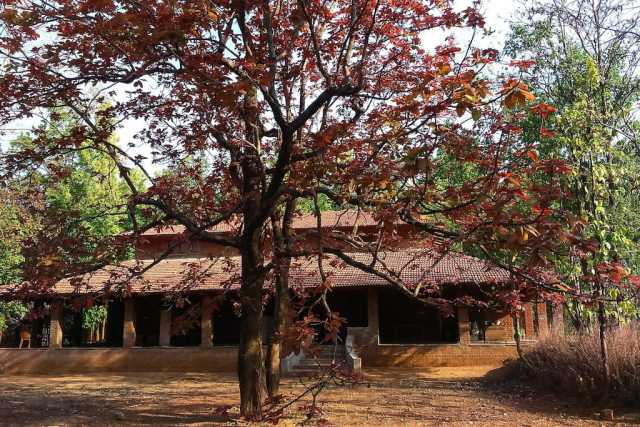 salban-madhya-pradesh5