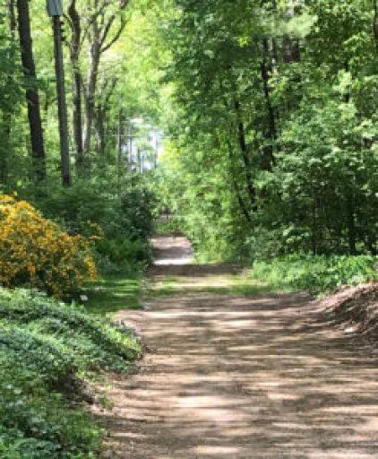 my GB walking path