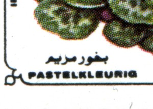 pastelkleurig-892-300p.jpg