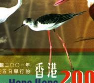 blokje-hong-kong-g-715-190p.jpg