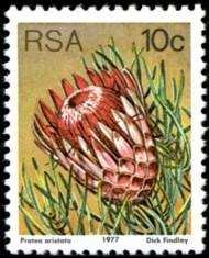 10-c-1977-096.jpg
