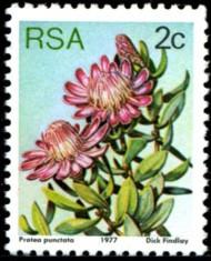 2-c-1977-087.jpg