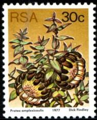 30-c-1977-100.jpg