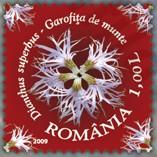 flora_roemenie_2009_poststamp_prachtanjer