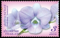 thailand_bloem_orchidee_7