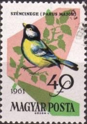 5 postzegel koolmees Parus major Hongarije 1961