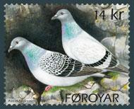 the-rock-pigeon-stamp-faroer