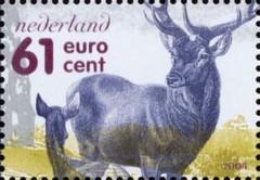 De Veluwe - 2004