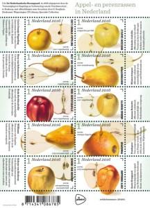 Vel Appel- en perenrassen in Nederland