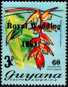 Guyana Mi 677