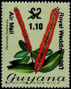 Guyana Mi 679
