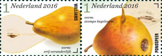 appel-en-perenrassen-in-nederland-rij-4