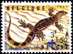 belgie-1346