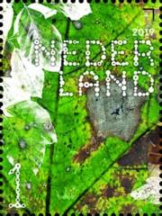 Beleef de natuur - bomen & bladeren - 3