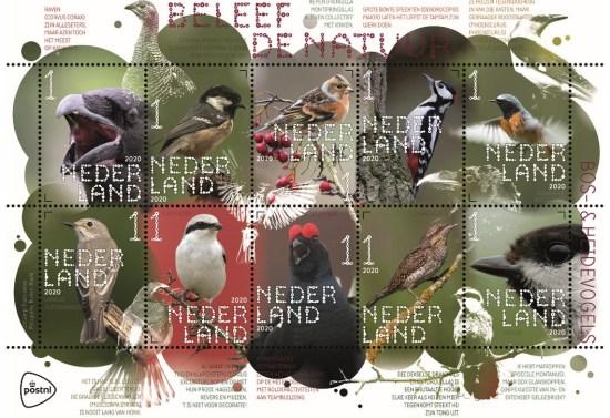 Beleef de natuur - bos- & heidevogels