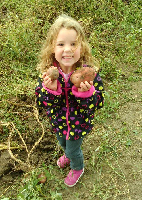 Potato girl holding two sprouting potatoes