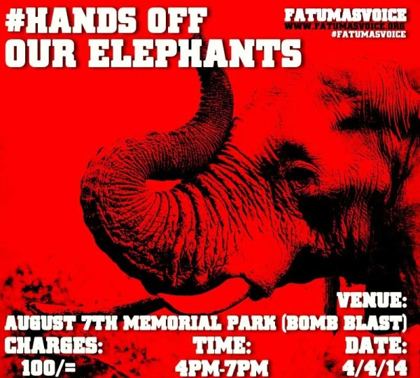 hands off our elephants