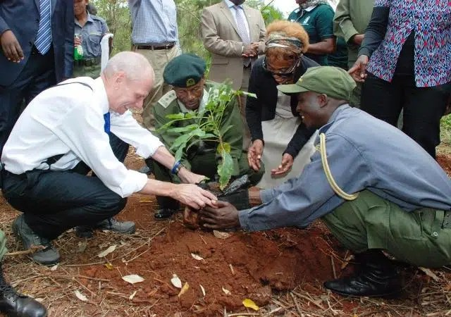 Ambassador Robert Godec massages the tree to get it out of its plastic temporary home. The plastic bags are reused so they should not be torn. A great way to protect the environment, reuse plastics