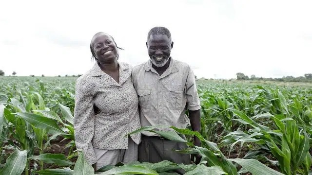 A farmer couple in Africa. Image from http://yenkasa-africa.amarc.org/en/node/54