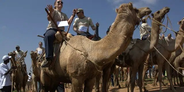 International Maralal Camel Derby. Image from http://www.magicalkenya.com/what-to-do/events-and-festivals/maralal-camel-derby/