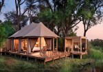 Travel: 9 Overlooked Precautions Before & During Camping and Safaris