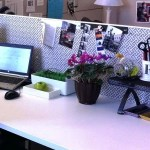 How To Make Your Work Cubicle A Healthier Space