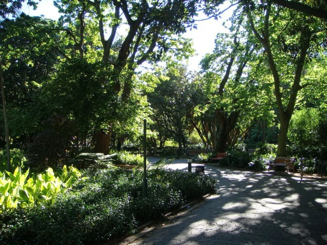 Company's Garden - Cape Town - Outdoors