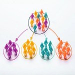 Why You Should Consider Market Segmentation For Your Business To Succeed