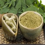 Health: The Benefits Of Moringa Oleifera