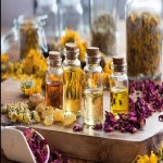 The Science Of Smell - Understanding The Benefits Of Aromatherapy